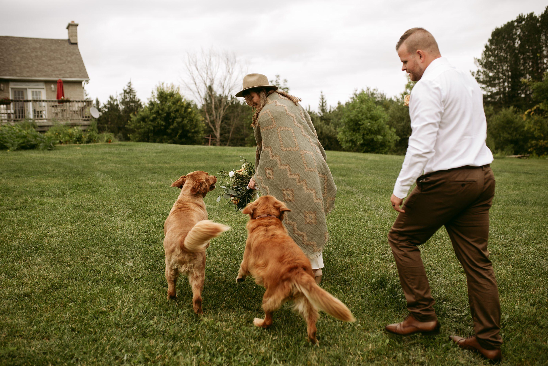 muskoka wedding,backyard elopement