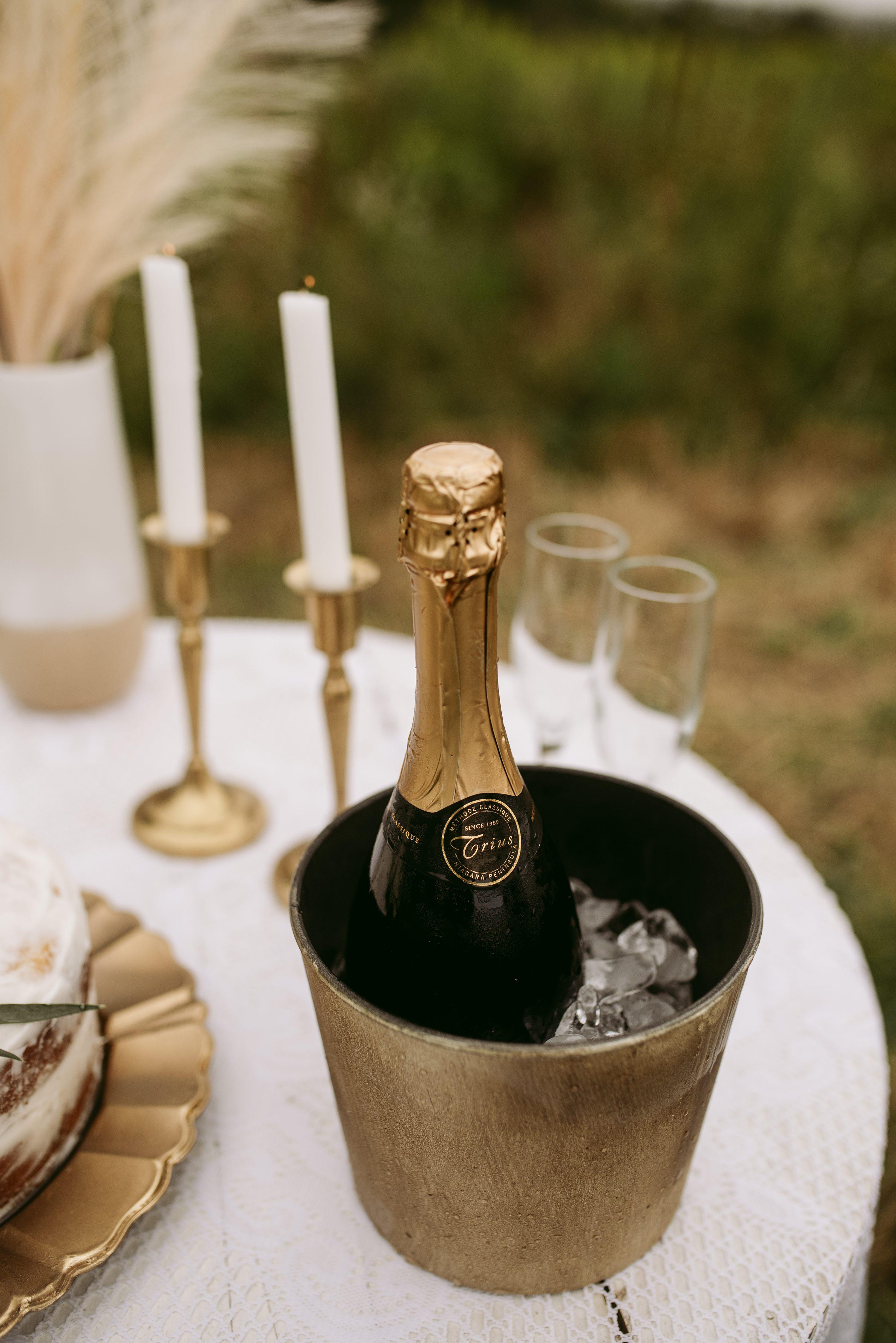 simple wedding,backyard elopement