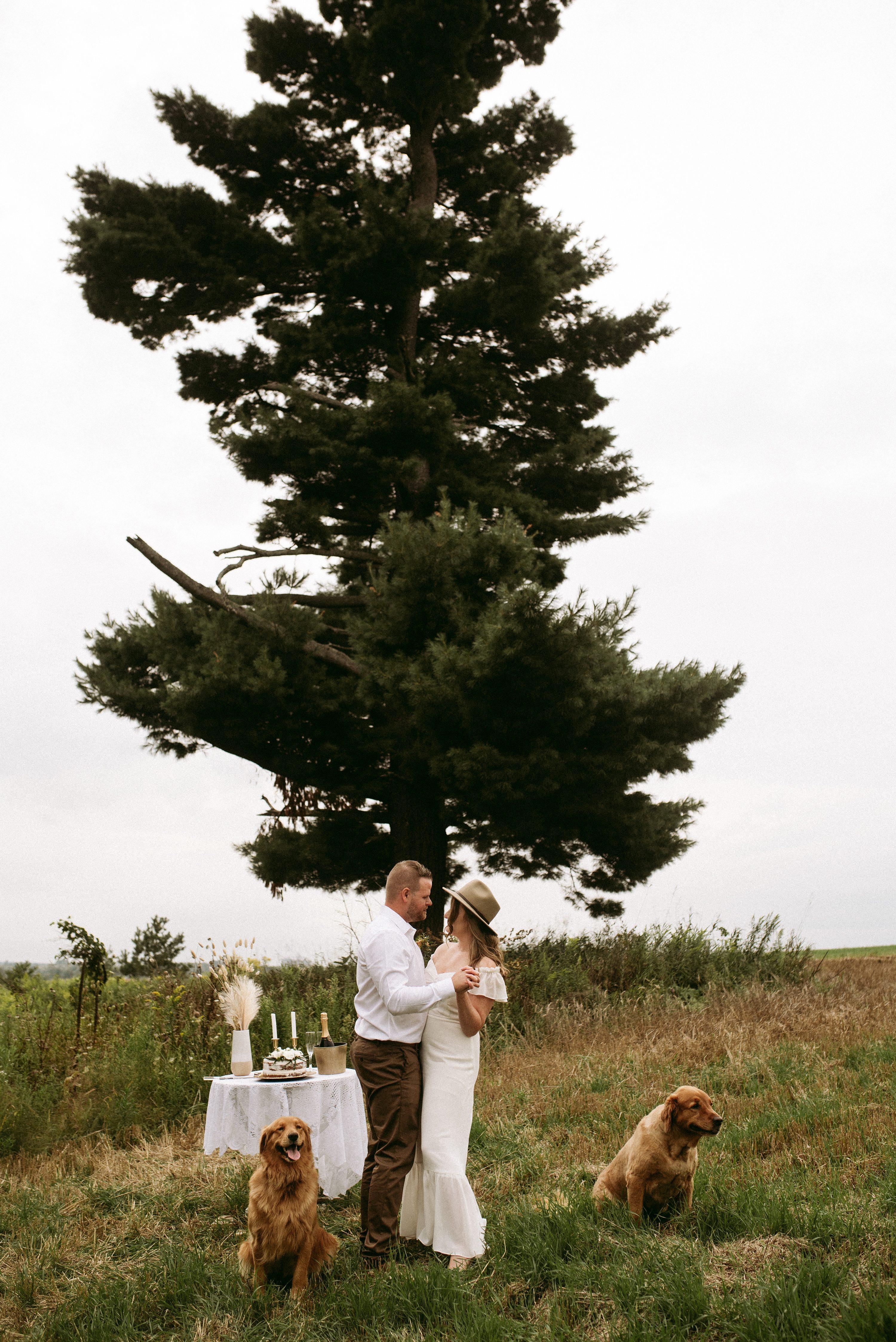 ontario elopement,simple wedding