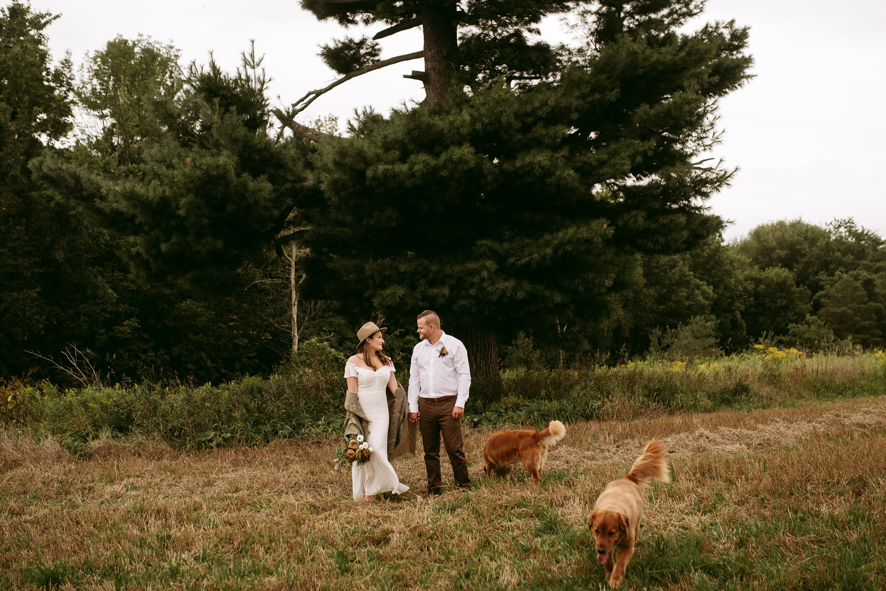 wedding with kids,wedding with dogs