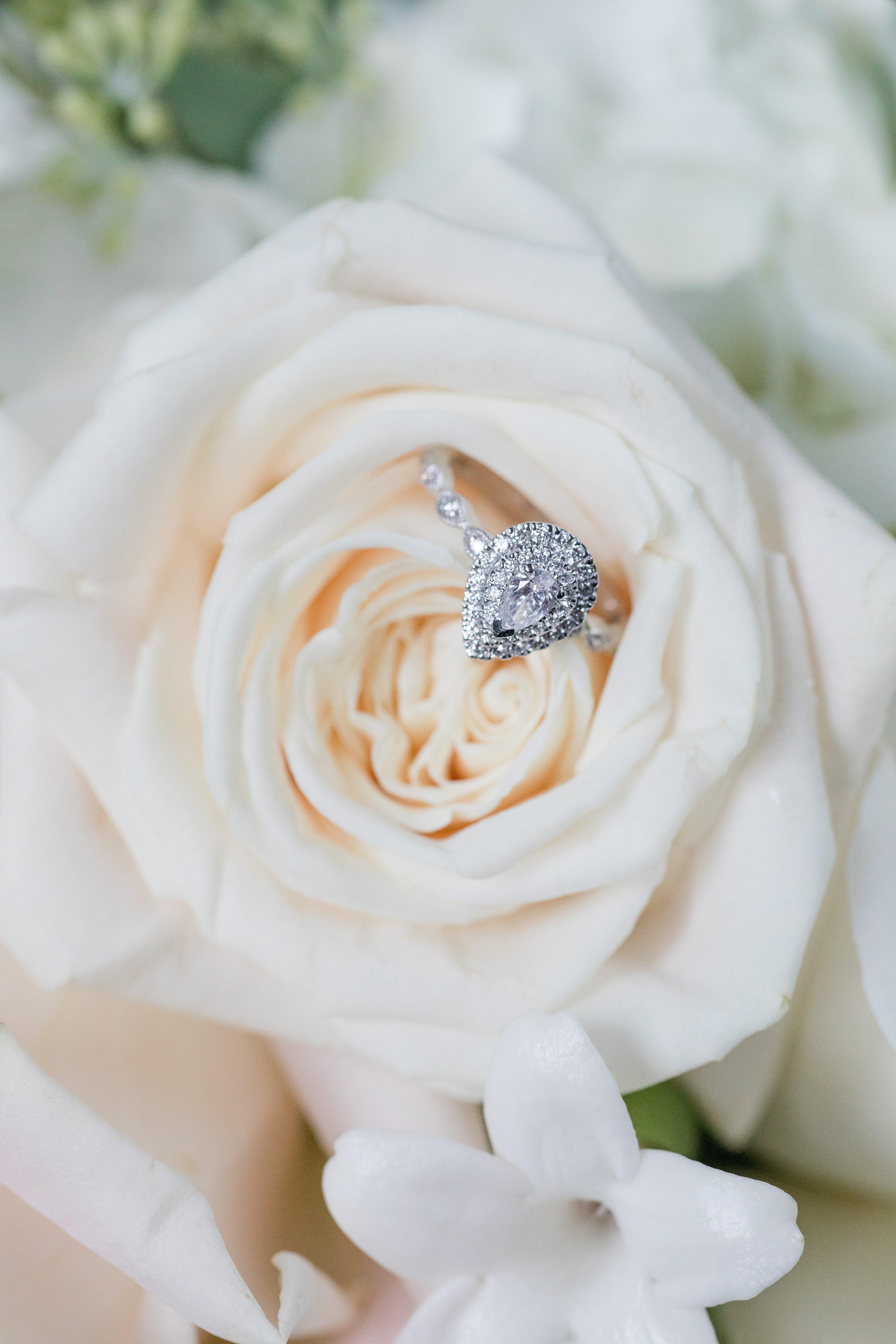 NJ elopement wedding, princeton wedding