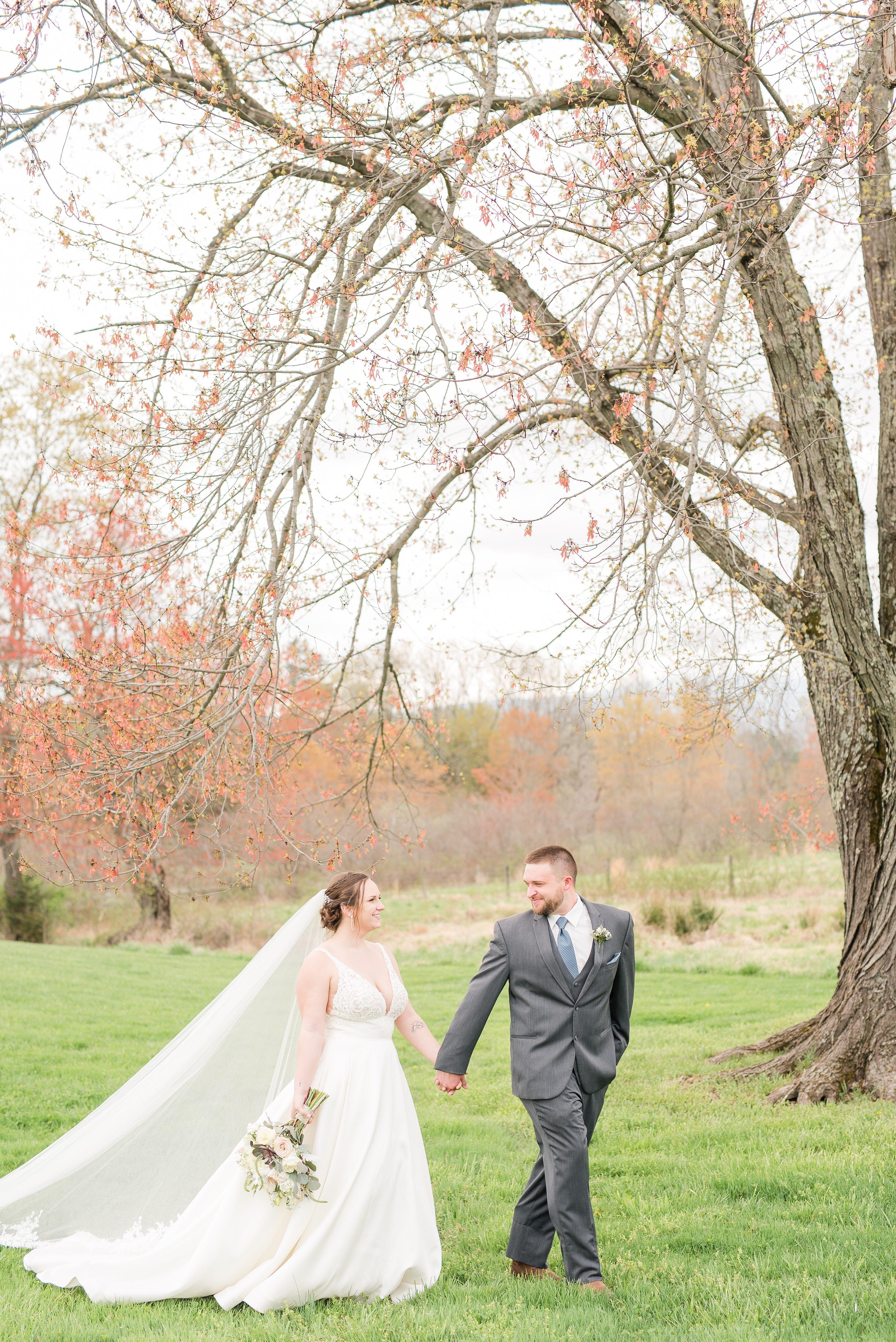 Virginia Wedding Photographer,Blue Ridge,bride and groom,mountain wedding,edgewood barn