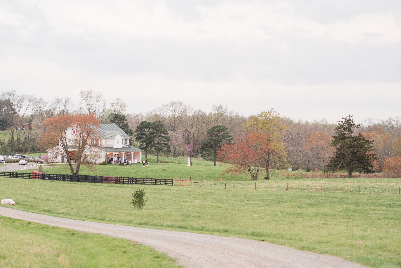 Charlottesville,Bright,Blue Ridge Mountains,bride and groom,edgewood barn,Barn at Edgewood