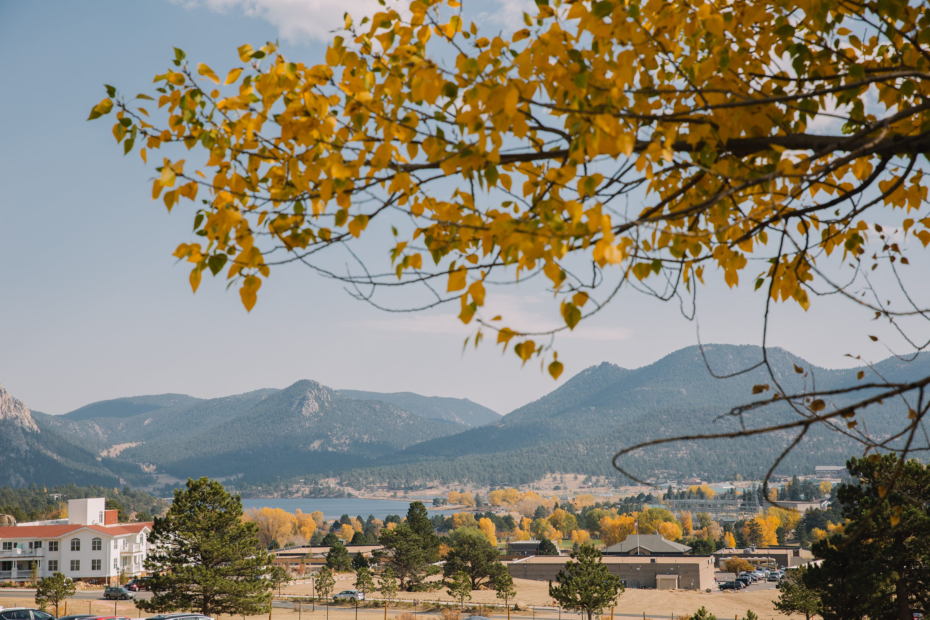 colorado,rocky mountains,yellow leaves